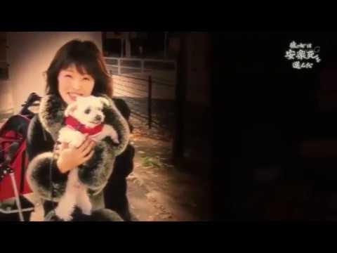 NHKスペシャル「彼女は安楽死を選んだ」
