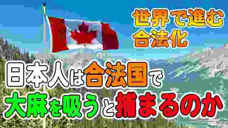 """【不思議な法律""""大麻取締法""""】日本人が海外で大麻を吸うと逮捕されるの?"""