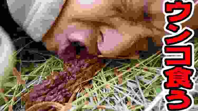 ウンコ食べてみた 生涯に1度はやってみたい事【ハッピーバレンタイン】チョコの悲劇