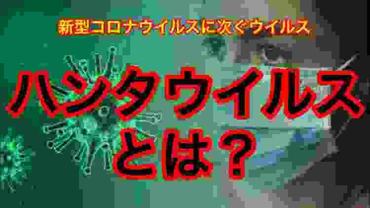 【徹底解説!】第2の新型コロナ⁉︎ハンタウイルス感染が中国で発覚!